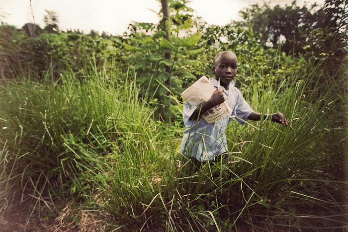 Rwanda Small-18