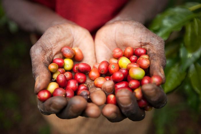 Rwanda Small-2