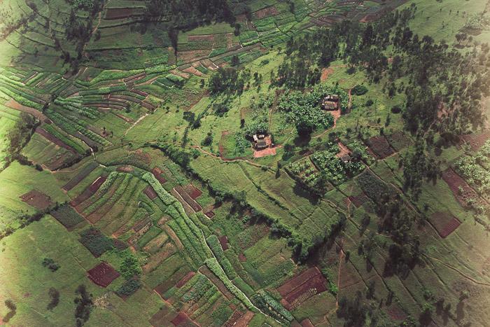 Rwanda Small-20