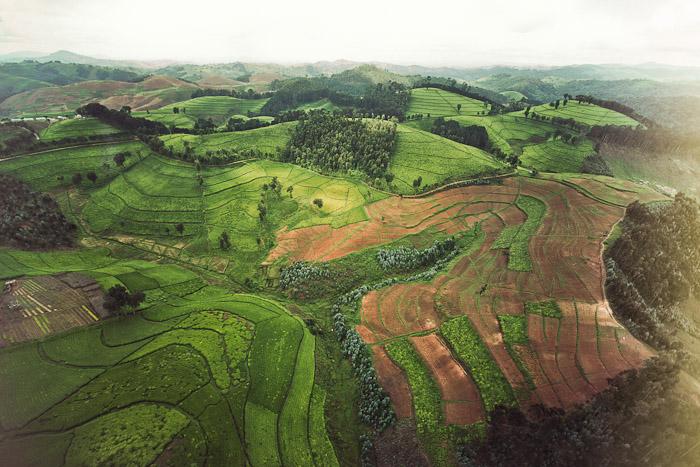 Rwanda Small-22