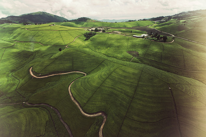 Rwanda Small-24