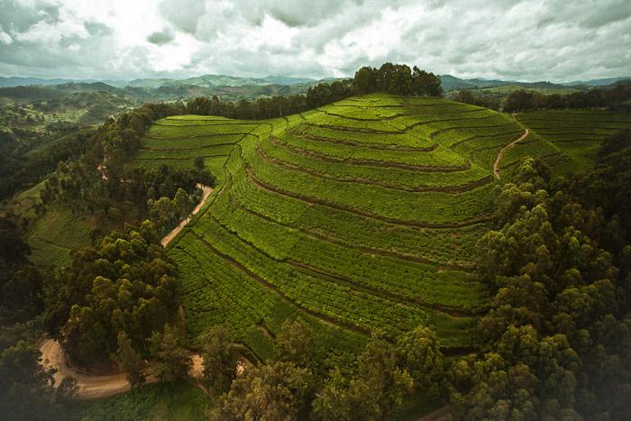 Rwanda Small-25