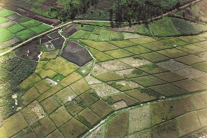 Rwanda Small-3