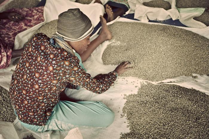Rwanda Trading Company-10