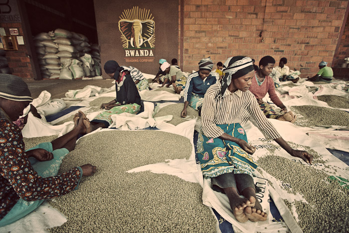 Rwanda Trading Company-8