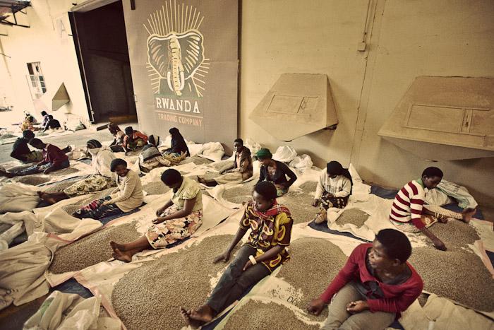 Rwanda Trading Company-9