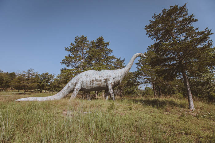 Dinosaur World Arkansas-13