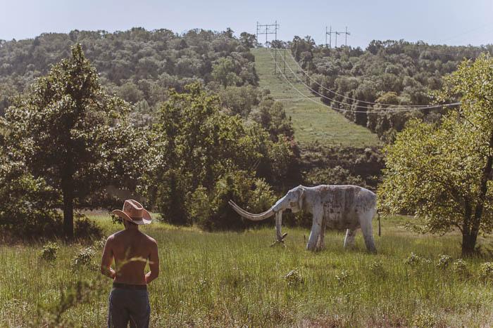 Dinosaur World Arkansas-27