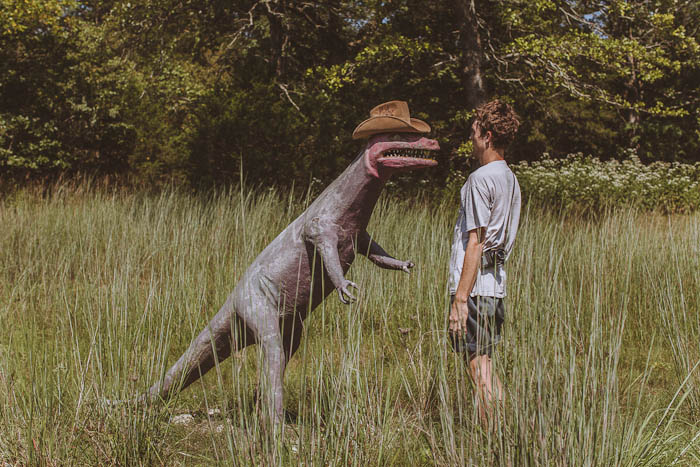 Dinosaur World Arkansas-28