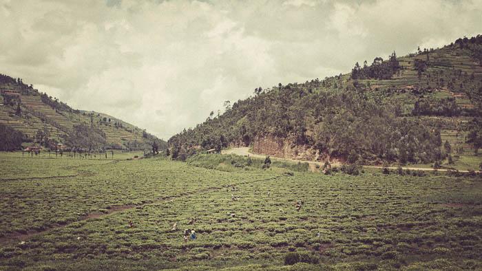 Rwanda Fonerwa Small-20